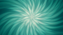 Subtle Radial Turquoise Petals Background Stock Footage