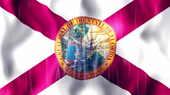 Florida State Flag Animation Stock Footage