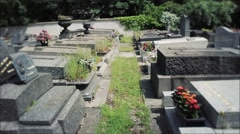 Walking Among Tombs In Cemetery Stock Footage