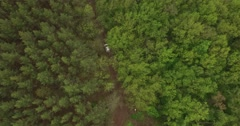 The car in the woods - stock footage