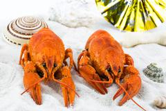 Two red lobsters on a sandy beach - stock photo