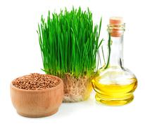 Wheat sprouts, wheat seeds in the wooden bowl and wheat germ oil - stock photo