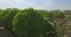 Aerial View of Green Trees in Public Park Stock Footage
