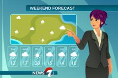TV Weather News Reporter Stock Illustration