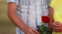 Male hand giving a rose to a female hand Stock Footage