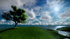 Lonely tree on green hill and ocean with seagulls flying, beautiful afternoon cl Stock Footage