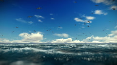 Rough sea and seagulls, timelapse clouds, sound included Stock Footage