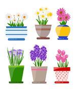 Set of houseplant. How to plant a houseplant Stock Illustration