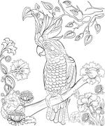 Hand drawn ink pattern. Coloring book for adult - stock illustration