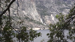 Hetch Hetchy National Park, flora zoom out Stock Footage