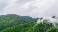 Mountains Trees Misty Green Landscape Calm Idyllic Nature Scenic Tranquil - stock footage