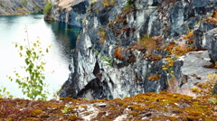 Moss and Grass in Marble Canyon Ruskeala in Karelia, Northern Russia Stock Footage