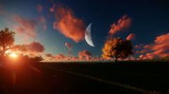 Couple running on green meadow, tree of life, sunrise full moon - stock footage