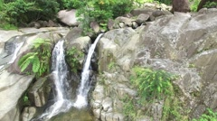 4K Waterfall and Rainforest Plants Vertical Pan - stock footage