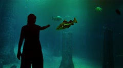 Woman near a huge aquarium. - stock footage