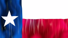 Texas State Flag Animation Stock Footage