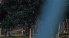 Young Woman in Warm Clothes Running in the Park Stock Footage