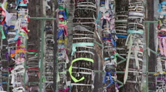 Holy places to worship the spirits. The trees tied colored ribbons round. Russia Stock Footage