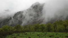 Windy trees forest pasture dense mountain fog Asturias Northern Spain - stock footage