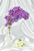 Lilac and vase Stock Photos