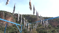 Two strings of dry fish hanging against mountains Stock Footage