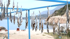 Salted fish drying on string outdoors Stock Footage