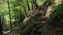 Narrow ground path runs on hillside slopes to the valley bottom Stock Footage