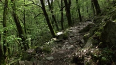 POV walk along stony path, leafy forest at hillside, rough stone trail Stock Footage