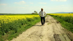 Man walks on a dirt road at the field rapeseed - stock footage