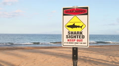 Shark In Water Closed Beach Stock Footage