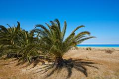 Las Marinas beach in Denia at alicante spain Stock Photos