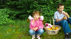 Children have a rest in the forest. Evening meal in the forest fruits. - stock footage