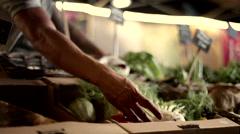 Vendor arranging vegetables at market. Stock Footage