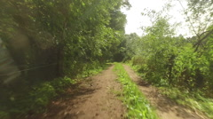A flight over an overgrown forest road - stock footage
