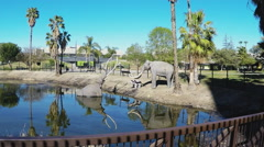 La Brea Tar Pits Pan Shot- Los Angeles California Stock Footage