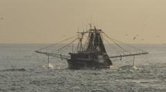 Fishing trawler early morning Gold Coast Stock Footage