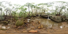 VR360 Rainforest environment after rain waterfall with nature sounds 360VR Stock Footage