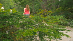 Green bush with blur people walking in the park - stock footage