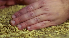 Home-grown oat grain lying in gray sack, male hands checking quality of seeds - stock footage