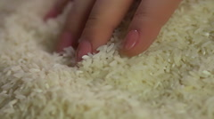 Female farmer's holding high quality white rice in hands, agriculture, diet Stock Footage
