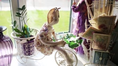 Composition of cards, plush toys girl on bicycle and vases Stock Footage