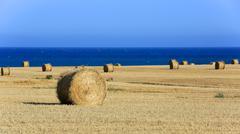 meadow with hay rolls near sea - stock photo
