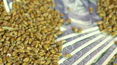 Grain trade, wheat seeds dropping in sack with money, organic food production Stock Footage