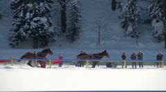 St Moritz grand prix horse skijoring - stock footage