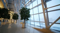Panorama of corridor next to large window and trees in pots Stock Footage