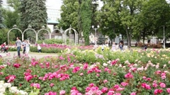 Couples men and women walking among flowers at fountain Stock Footage
