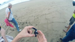 People release free little turtle on the beach Stock Footage
