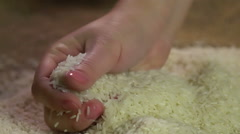 Lady's hands enjoying touch of collected rice, organic product, agriculture Stock Footage