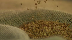 Good quality brown buckwheat dropping on grey sack, agriculture business Stock Footage