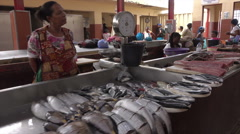 Mindelo fish market, Sao Vicente, Cape Verde Islands Stock Footage